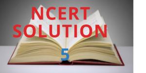 NCERT SOLUTION 5